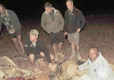 哈利(左二)跟大家及原野研究狮子。