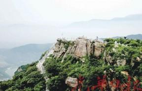 花果山内一片绿油油,等高望云海,窥探连云港的美。