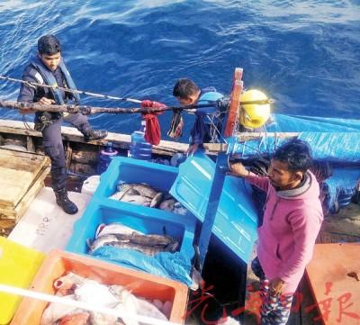 印尼渔夫私闯我国海域作业,偏偏盖传统的垂钓技巧,钓获200公斤渔获。