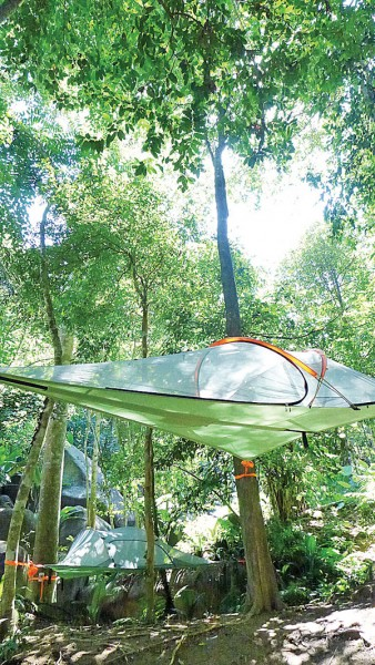 其中一款将吊在树上的半空帐篷。
