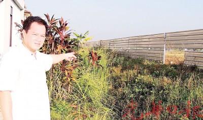 陈海祥:住宅区后方围篱为让路发展都被拆除,让贼徒有机可乘。
