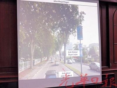 左边道路的其中18棵树木,需让路加宽道路工程,或将遭到砍掉和移植。