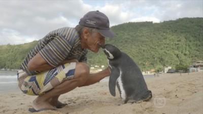 索萨和企鹅Dindim情如家人,互相亲吻。