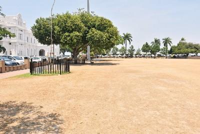 原始关子角草场也吃酷热高温晒得枯黄。