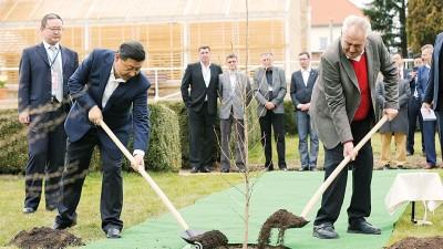 两国元首在庄园里种下友谊之树。