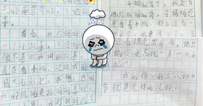男孩的殷殷日记在网上爆红。