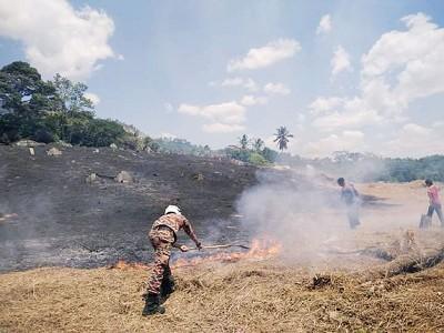 消拯员用各种灭火工具扑灭野火。