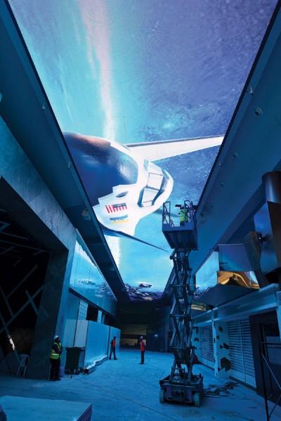 光大5楼的LED绝对是个吸睛的大亮点之一。