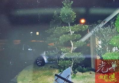 轿车失控撞倒电灯柱,所幸围墙阻挡柱子倒向住家,惟路旁的昂贵罗汉松树被撞毁。(图片取自脸书专页)