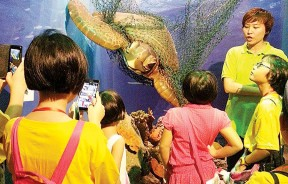 负责人提醒小校记们爱护环境的重要性,才不会伤害到海洋里的海龟。