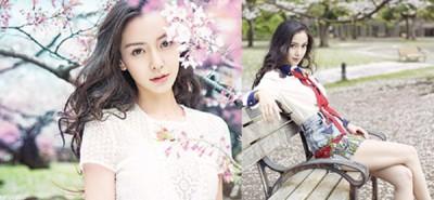 Angelababy在微博晒出一系列与樱花合拍的美照。