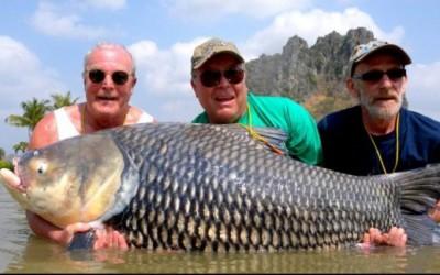 霍珀(左)、法尔布拉斯(中)及戴尔(右)去年曾一起到泰国旅游钓鱼。