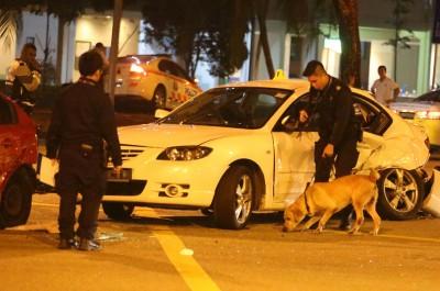 警方出动警犬搜查罪证。