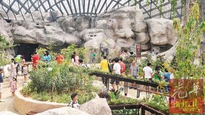 """一场别开生面的蝴蝶昆虫学习之旅即将展开,""""虫鸣大地""""现已开放,即日起至7月30日访客可享优惠价。"""