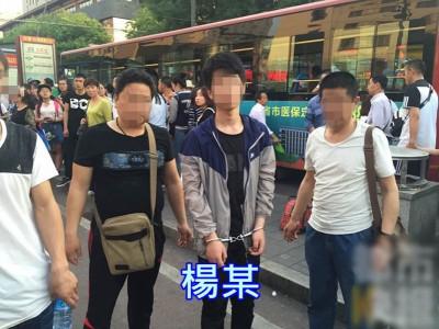 杨某给火车站行窃时被捕。