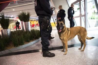 巴黎戴高乐国际机场加强保安。