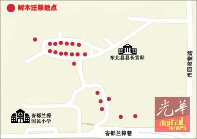 16棵树将会从州回教堂路旁,迁移至东北县县长官邸后方。图中的红点表示树木迁移的新位置。