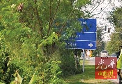 玻州十字港路的路牌被树叶遮住。