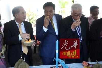 左起槟旅游委员会主席罗兴强、阿菲夫(中)和槟爱心委员会主席彭文宝一起大啖名种榴莲。