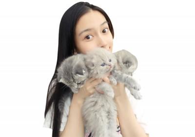Baby的爱猫先前生下小猫。