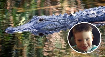 小莱恩上周二在迪士尼世界的七海湖边戏水时被鳄鱼叼走。