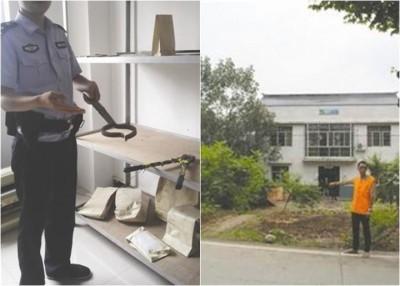 警方指疑犯主要趁凌晨犯案,用剪线钳、狗夹和一辆客货车偷狗。
