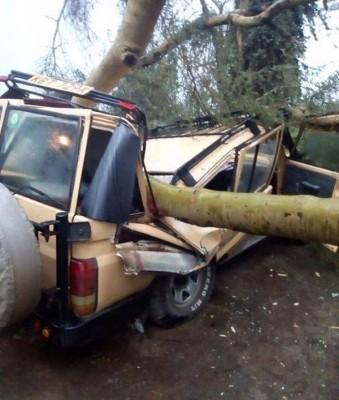 阮俊辉夫妻乘坐的车辆遭倒塌大树砸中,造成夫死妻伤。