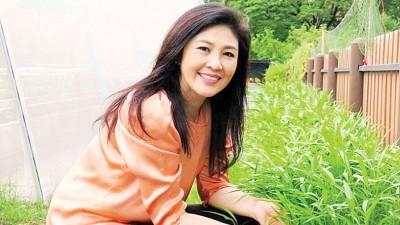英叻将再因大米收购计划而面临起诉。