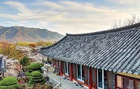 韩国旅游最近兴起的新城市-大邱!