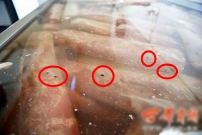 肉池表面漂浮大量苍蝇(红圈示)。