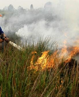 印尼烧芭每年周而复始,林火导致烟霾再起!
