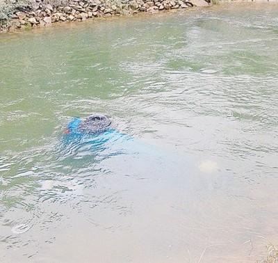 轿车失控坠入水沟沉没。