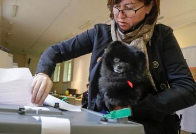 俄罗斯女子带同狗狗去投票。