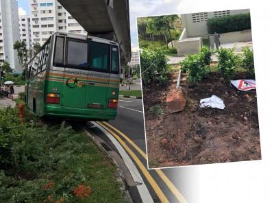 巴士灵车撞倒阿嫲和路牌后,停在路旁。