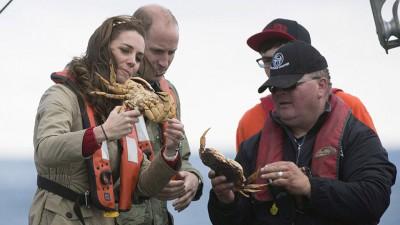 凯蒂抓起螃蟹研究一番。