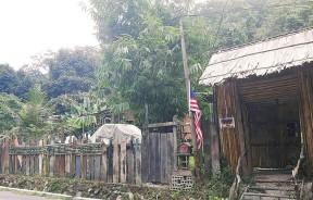 雨林树屋外貌。