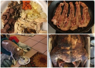 弗洛里斯的母亲为黛西(左下图)炮制了它最爱的美食。(互联网图片)