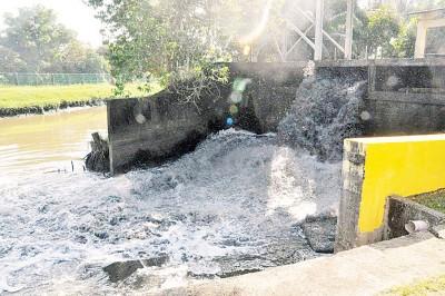 才园抽水泵将大量之渠道水排出时,有如泄洪。