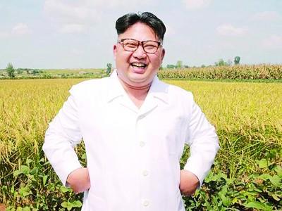 金正恩卖壮阳药,蛇胆松茸要行销全球。