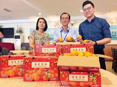 余锦明(中)在汪金珠(左)及黄源发的陪同下指出,首批于去年11月中旬收成远从中国永春进口的芦柑已经运抵槟城并且上市售卖。
