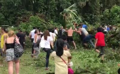 古树倒下压中人,多名公众围着树干,半推半举,尝试搬树救人。