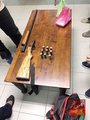 一名50岁胶农非法闯入吉打锡区森林保护区捕猎,遭野生动物及国家公园局执法员逮捕。图为其携带的散弹枪及9颗散弹。