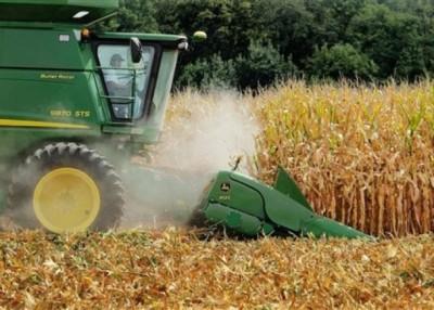 墨西哥可能已向美国中西部购买玉米。