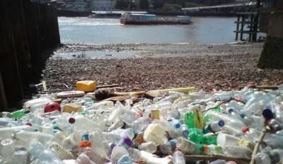 义工发现大批塑料瓶。