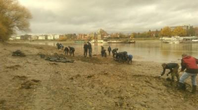 义工帮忙清理河道中的塑料垃圾。