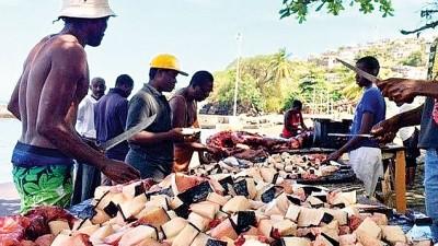 地方捕鲸手拿鲸肉分割整齐以便出售。
