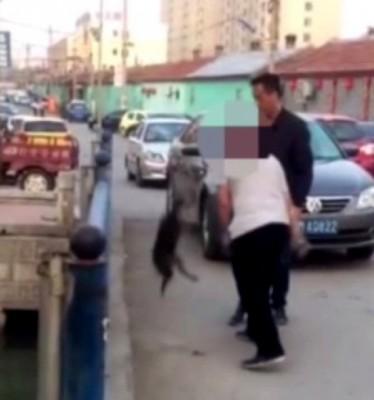 男子抱起小狗甩向地上。