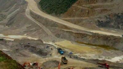 近几年,当地大规模开采,把这些化石当作磷肥出售。