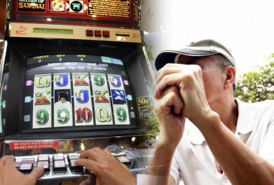 """郑先生同样年内""""打老虎""""输掉500多万元新币。"""