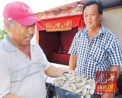 陈俊明、刘亚成:泰国缺货,之所以该国需求量大。